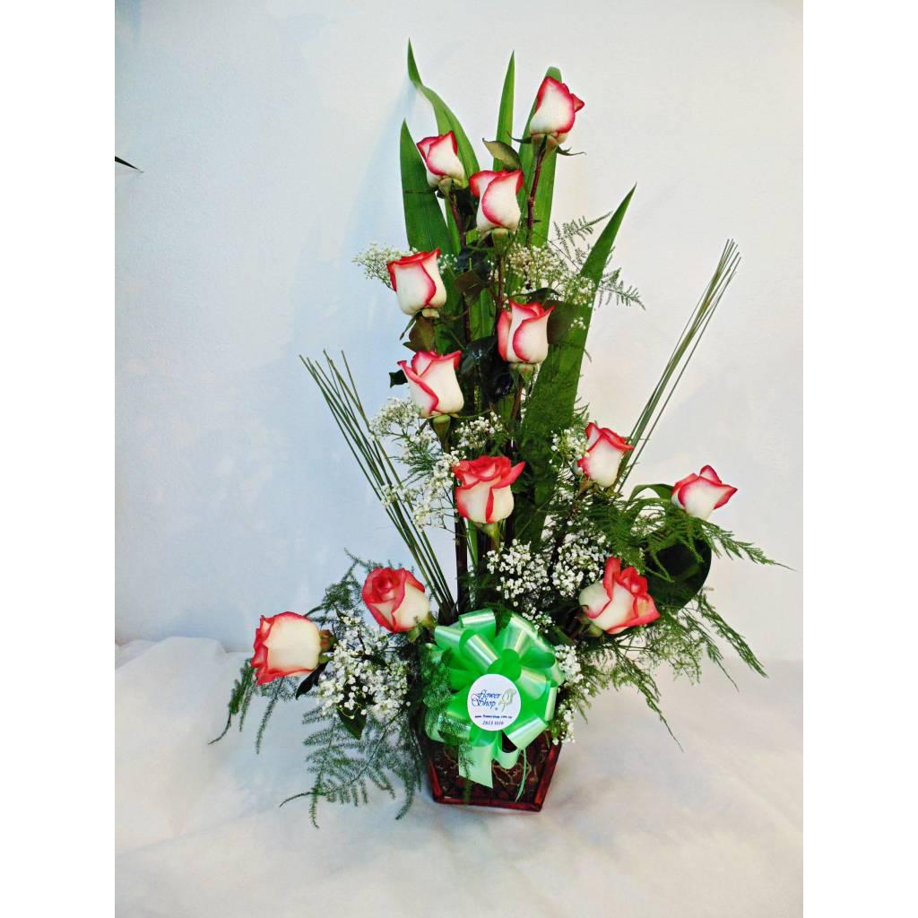 Arreglo de 12 Rosas Premium !!!