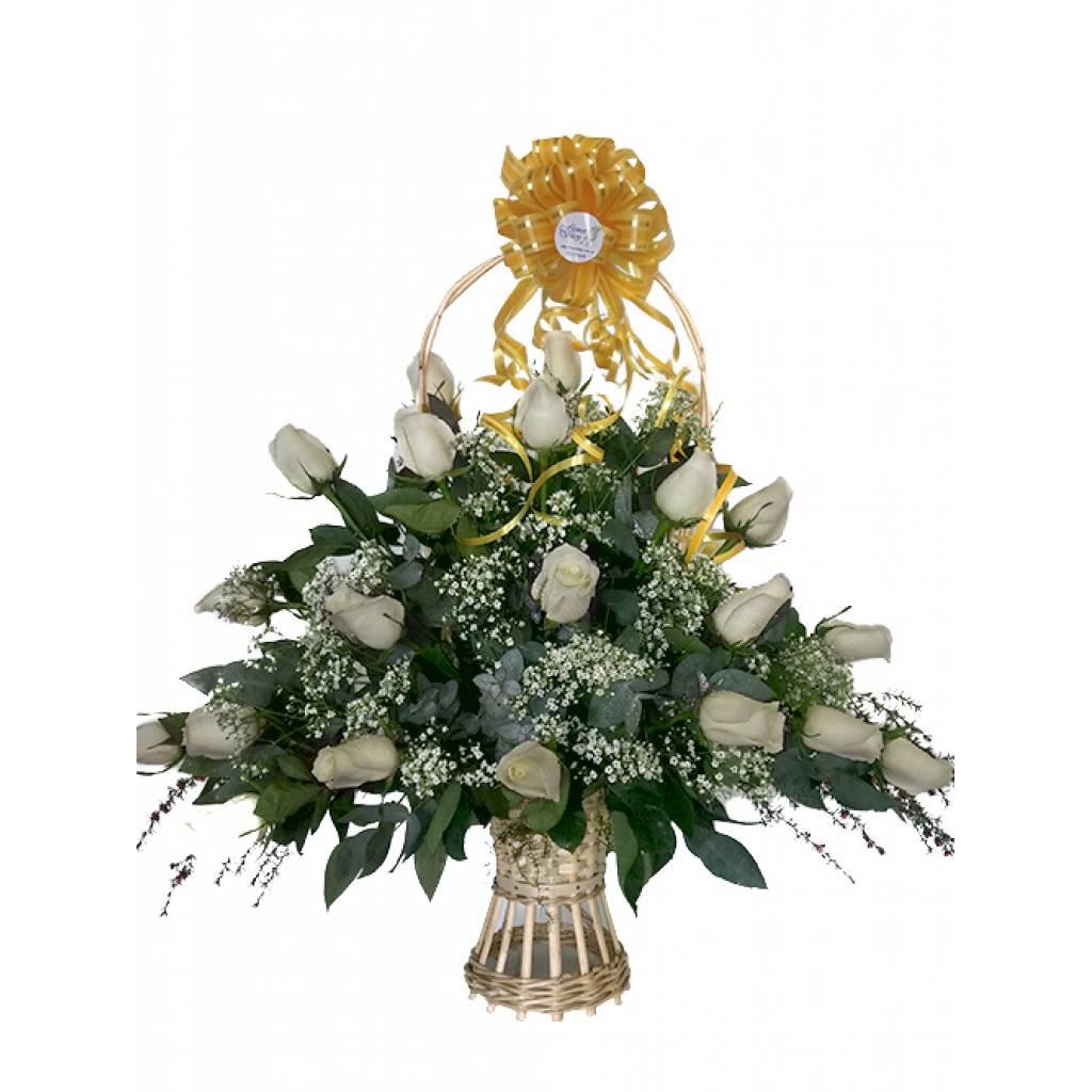 24 Rosas Blancas para DESLUMBRAR !!!