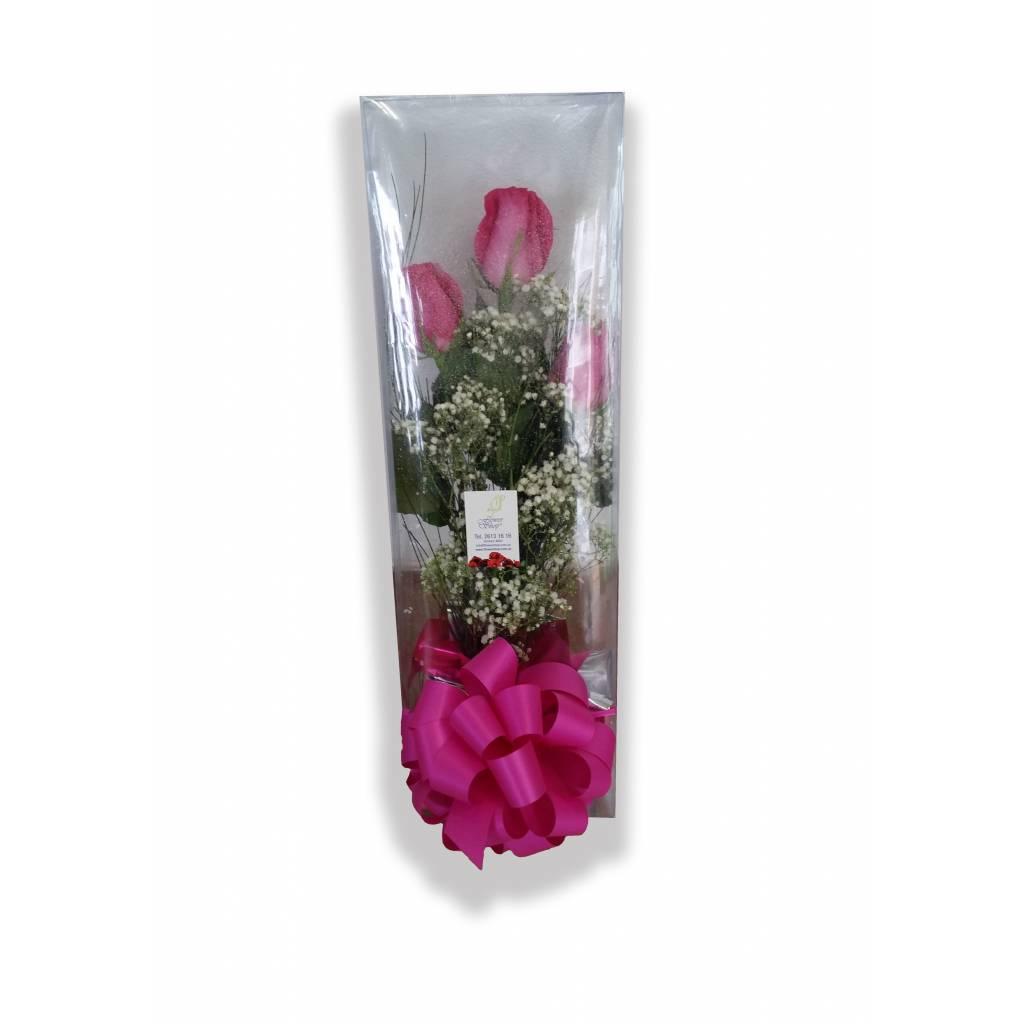 Estuche Transparente con 3 Rosas